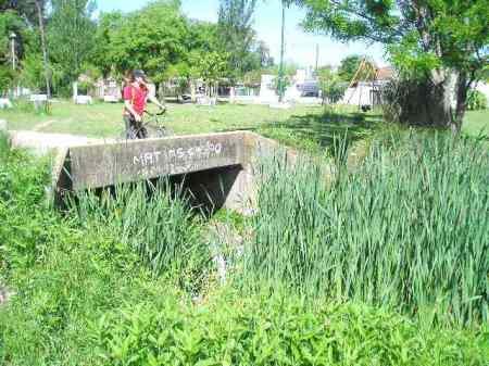 basura-y-vegetacion-de-anos-sin-mantenimiento-en-cauce-del-arroyo-las-perdicesp1010741.jpg