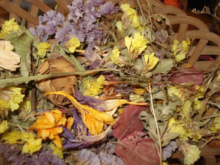 Flores y frutos disecados pueden utilizarse como adornos, mejorando su preservación bajo vidrio.