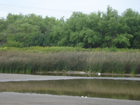 La orilla del Rio de la Plata tan cerca hace que la situación sea delicada.