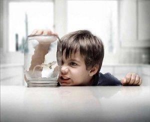 Vida artificial, aquella que está destinada a no llegar a su fin naturalmente, como si fuera un objeto de plástico.