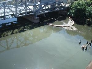 La basura flotante, lo único que el sistema de manguera flotante puede captar, sobrepasa y sigue airosa hacia el Río de la Plata, lo que se quiso sin éxito evitar.