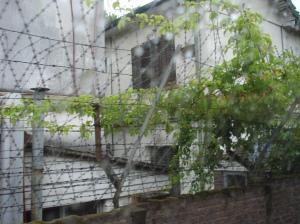Alambrados perimetrales de varios metros con alambre de púas.