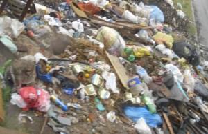 *Foto detalle mostrando que todos los residuos que no deberían estar allí, son domiciliarios.