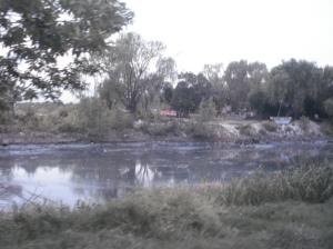 La basura es colocada por la gente en la ribera, donde en cada creciente el agua se lleva lo que puede, contaminando el río más ancho del mundo a través de lo que llevan sus afluentes. Un container con número de TE no deja dudas de uno de los irresponsables que arrojan basura al río.