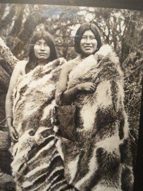 Con pieles de guanacos se abrigaban sus cueros eran para hacer los toldos, su carne apetecible, eran la fuente de recursos naturales.