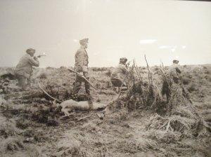 Los soldados al servicio de los europeos cazaban con más modernas armas, de fuego, mayor alcance, precisión, mortíferas, insensibles.