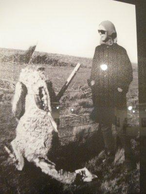Así morían los guanacos, enganchados en los alambrados de púas que no eran para ellos, sino para criar ovejas. A los indios los mataban como hoy se matan lagartos, pumas, mulitas, loros, cóndores y vizcachas, para que sus tierras sirviesen para las ovejas.