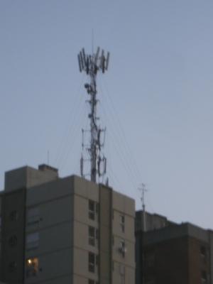 Una tras otra, en toda la ciudad, en todas las ciudades, en todos los barrios, muchas, distintas marcas se disputan las alturas, a costa posiblemente de nuestra salud.
