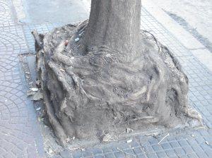 Hallé la raíz cuadrada.