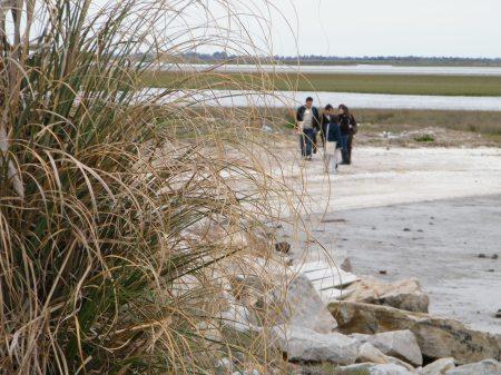 La hermosa costa de playas amplias crecientes, a diferencia de otras localidades donde están siendo lavadas por la corriente del mar.