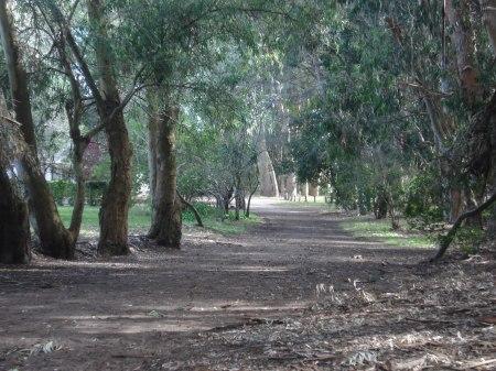 Caminante, el camino aquí ya está hecho, para visitarlo sólo hay que ir.