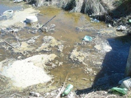 """Vista de la contaminación el 20 de setiembre 2009 en el canal pluvial paralelo a la Av. La Naval donde se arrojan """"POR ERROR"""" efluentes cloacales vecinales, grasas, aceites y detergentes."""