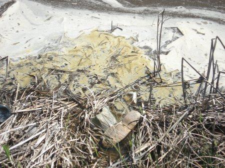 Contaminación cloacal del canal pluvial, más basura, plásticos, vidrios.