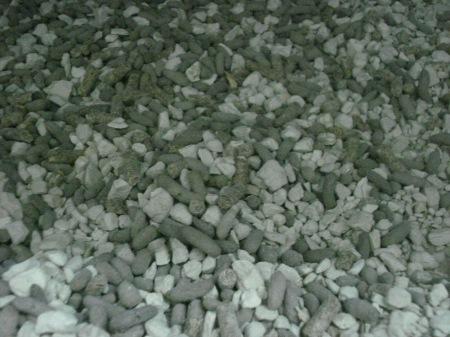 Piedritas absorventes blancas mezcladas con excrementos de chinchilla que son secos y recién cuando se acumulan muchos se cambia la carga, renovando las piedritas de la bandeja recolectora. .
