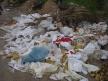 Basura acumulada en sitio inexcusable. No se debe permitir.