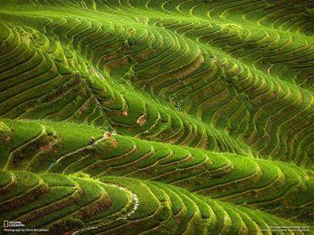 Laderas con sistema de terrazas par cultivo invención atribuida a los Incas