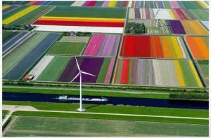 Energía eólica solar
