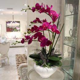 Flor orquídea fucsia