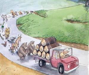 Bosques cumplanleyes de protección