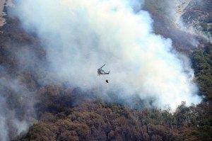 Bosques helicóptero hidrante echanodo