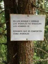 Bosques Ensuciar omo animales