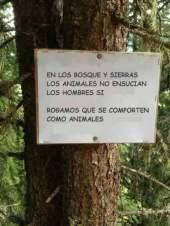 Bosques Ensuciar omo animales