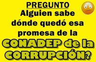 ! Corrupción CONADEP