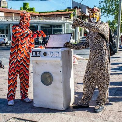 tigre-lavado-de-dinero-sucio-2016