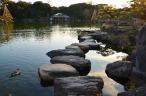 Camino de piedras 1